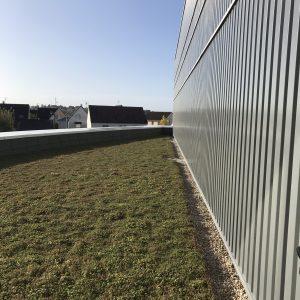 mur parieto dynamique